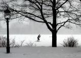 le skieur de fond