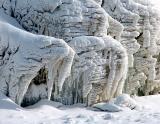 Les élephants de neige