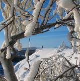 Par  la fenêtre de neige