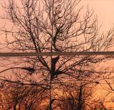 le coucher de soleil des meilleurs jours