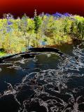 la rivière noire