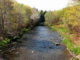la rivière Ferrée au printemps