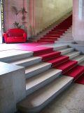 Genève,  les escaliers du musée
