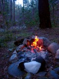 Kelly lies in the campfire ring on a very cold morning