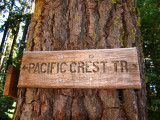 PCT Trail sign