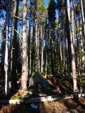 Camp 1 at Squaw lake