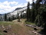PCT intersection on Shelly Lake saddle, view south