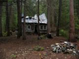 The Cedars cabin, falling back into the forest.