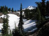 Mt Hood along the PCT