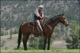 Tourist Cowboy
