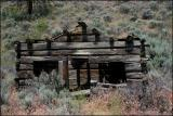 Bridge River Log Cabin ruins