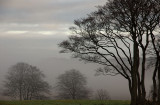 24th December 2008  misty