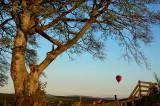 11th May 2009  balloon