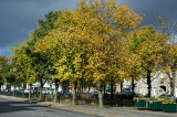 6th October 2012  overnight Autumn colour