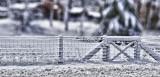 Gates After Snow Version 2