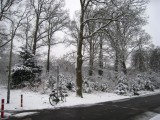 8 february 2007 - Snow, De Bilt