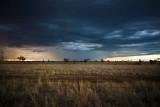 Roma Storms