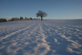 Snow in Yorkshire 2009