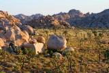 3674 Morning in Hidden Valley.jpg