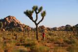 3702 Photographing Hidden Valley.jpg