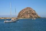 4180 Morro Rock.jpg