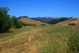 4213 Fields around Cambria.jpg