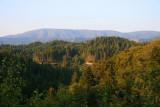 4750 Overlooking Redwoods NP.jpg