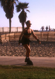 Rollerblading babe at Venice Beach