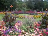 GardensBuryStEdmondsAbby.jpg