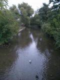 RiverGipping_Stowmarket.jpg