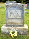 Joel David Hawkins III