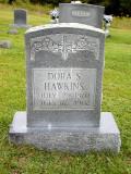 Dora Shelton Hawkins (1870-1902)