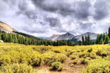 Road between St. Elmo and Tin Cup Pass