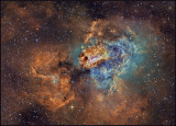 The Swan nebula