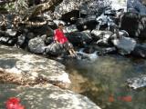 Falls Sheikha