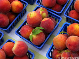 Peaches in blue trays