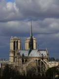 Notre Dame web.jpg