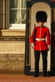 Guard Buckingham Palace web.jpg