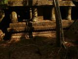 Beng Melea temple.jpg