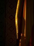 Big buddha hand.jpg