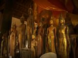 Many buddha statues.jpg