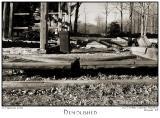 06Feb06 Demolished - 10021