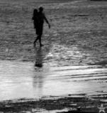 Maine 2005