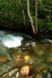 Meadowee River 4