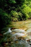 Meadowee River 5