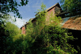 Yet another abandoned peat moss plant