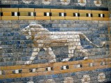 Lion at Pergamum Museum - Berlin