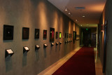 Images on display at the Boardroom