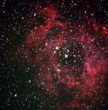 Rosetta-Nebula.