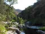 Cool Mountain Creek